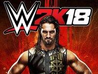 record: פרטים חדשים על WWE 2k18 נחשפו. cover image