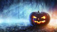 record: ה־Halloween שיפחיד אתכם: האיוונטים המומלצים cover image